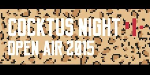 Cocktus Night Open Air 2015